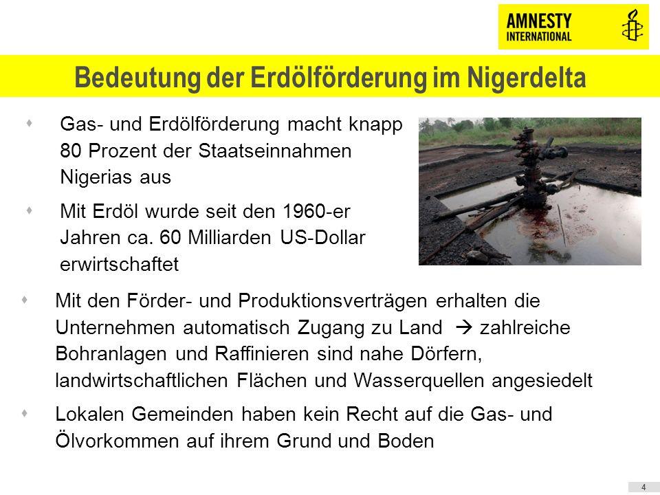 5 Umweltzerstörung im Nigerdelta