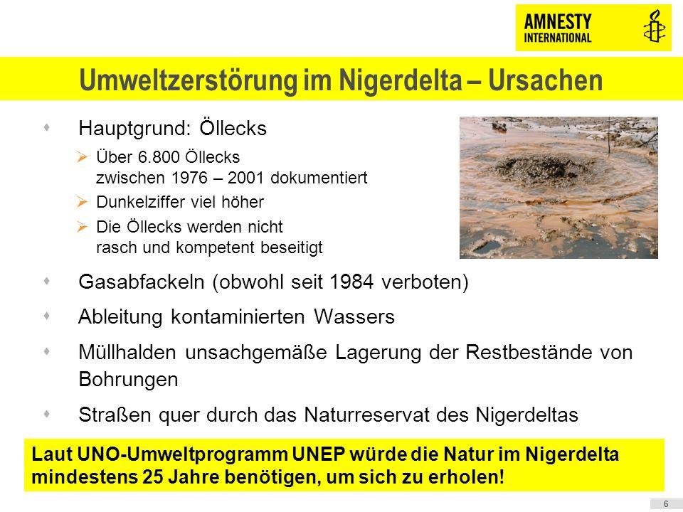 Amnesty International fordert svon den im Nigerdelta agierenden Ölfirmen eine umfassende Säuberung des verschmutzten Gebietes und svon der nigerianischen Regierung eine strengere Regulierung der Ölindustrie.