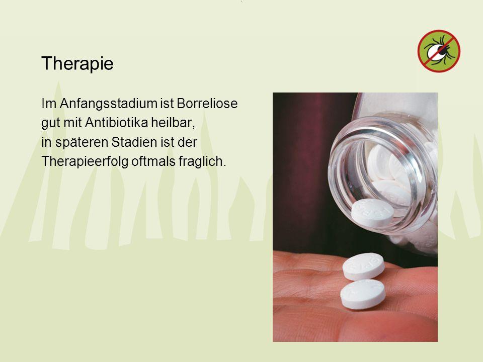 Therapie Im Anfangsstadium ist Borreliose gut mit Antibiotika heilbar, in späteren Stadien ist der Therapieerfolg oftmals fraglich.