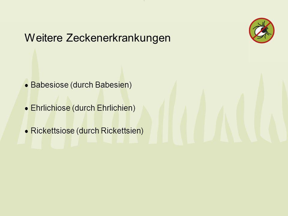Weitere Zeckenerkrankungen Babesiose (durch Babesien) Ehrlichiose (durch Ehrlichien) Rickettsiose (durch Rickettsien)