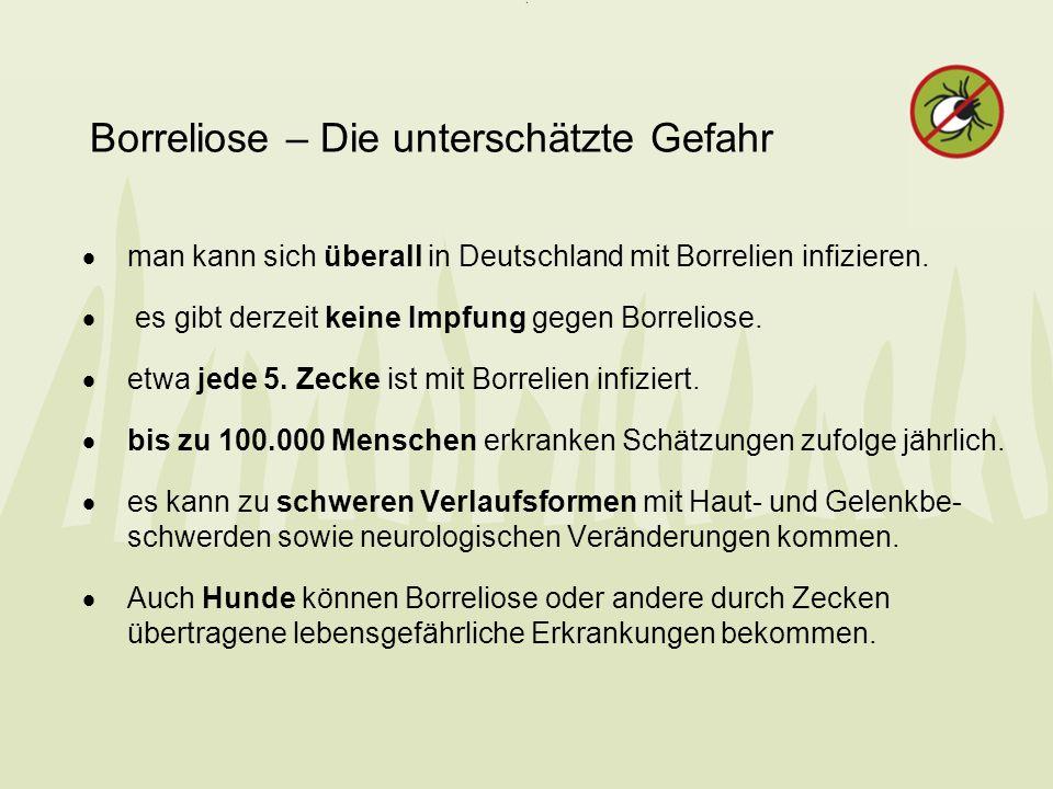 Borreliose – Die unterschätzte Gefahr man kann sich überall in Deutschland mit Borrelien infizieren. es gibt derzeit keine Impfung gegen Borreliose. e
