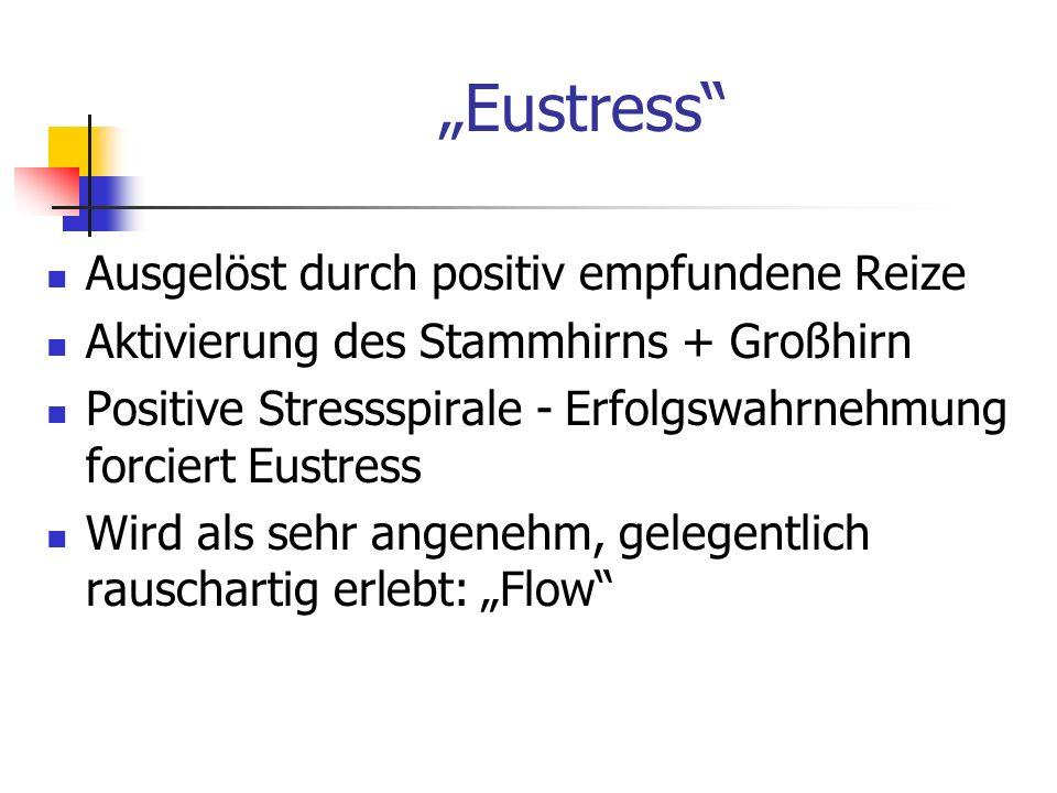 Eustress Ausgelöst durch positiv empfundene Reize Aktivierung des Stammhirns + Großhirn Positive Stressspirale - Erfolgswahrnehmung forciert Eustress