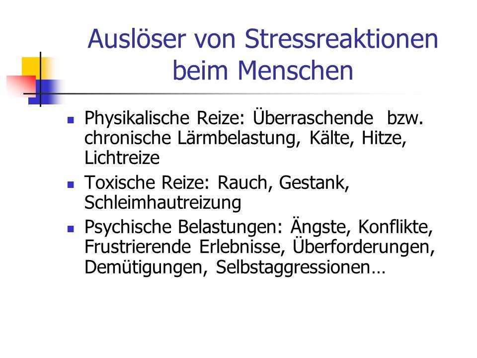 Auslöser von Stressreaktionen beim Menschen Physikalische Reize: Überraschende bzw. chronische Lärmbelastung, Kälte, Hitze, Lichtreize Toxische Reize: