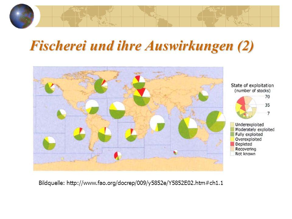Beispiel: Stör Bildquelle: european environmental outlook