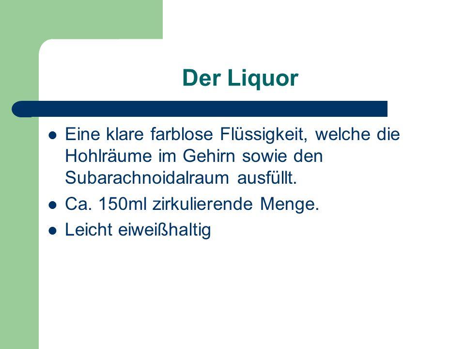 Der Liquor Eine klare farblose Flüssigkeit, welche die Hohlräume im Gehirn sowie den Subarachnoidalraum ausfüllt. Ca. 150ml zirkulierende Menge. Leich