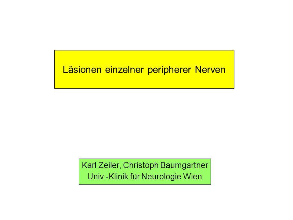 Läsionen einzelner peripherer Nerven Karl Zeiler, Christoph Baumgartner Univ.-Klinik für Neurologie Wien