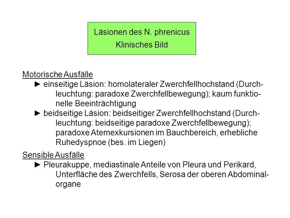 Läsionen des N. phrenicus Klinisches Bild Motorische Ausfälle einseitige Läsion: homolateraler Zwerchfellhochstand (Durch- leuchtung: paradoxe Zwerchf