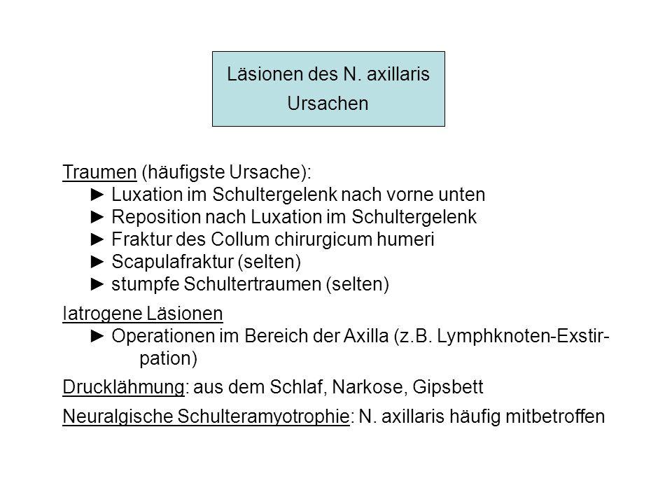 Läsionen des N. axillaris Ursachen Traumen (häufigste Ursache): Luxation im Schultergelenk nach vorne unten Reposition nach Luxation im Schultergelenk