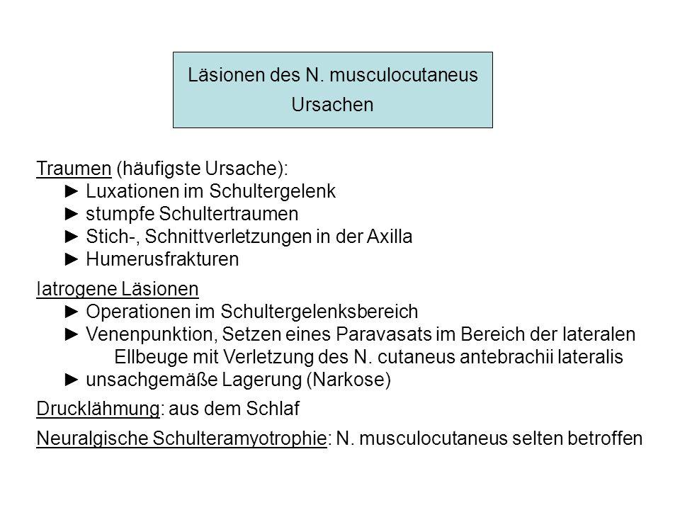 Läsionen des N. musculocutaneus Ursachen Traumen (häufigste Ursache): Luxationen im Schultergelenk stumpfe Schultertraumen Stich-, Schnittverletzungen