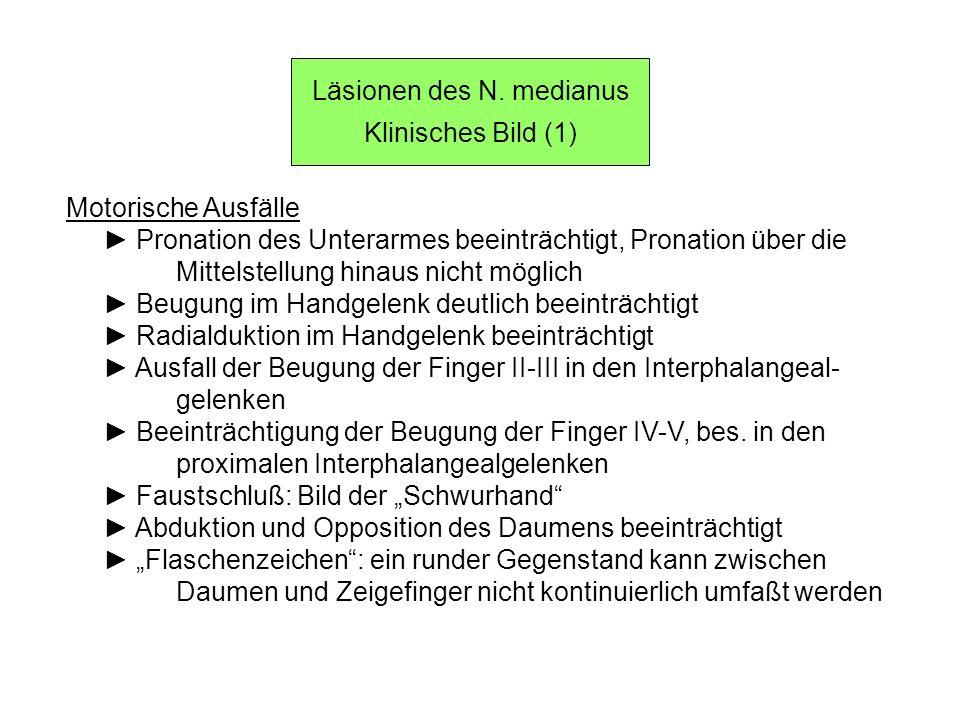 Läsionen des N. medianus Klinisches Bild (1) Motorische Ausfälle Pronation des Unterarmes beeinträchtigt, Pronation über die Mittelstellung hinaus nic