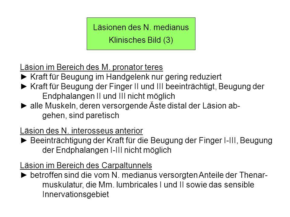 Läsionen des N. medianus Klinisches Bild (3) Läsion im Bereich des M. pronator teres Kraft für Beugung im Handgelenk nur gering reduziert Kraft für Be