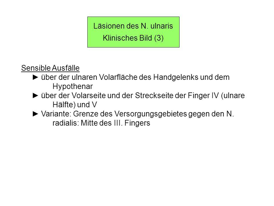 Läsionen des N. ulnaris Klinisches Bild (3) Sensible Ausfälle über der ulnaren Volarfläche des Handgelenks und dem Hypothenar über der Volarseite und