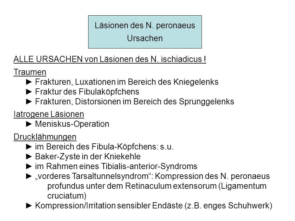 Läsionen des N. peronaeus Ursachen ALLE URSACHEN von Läsionen des N. ischiadicus ! Traumen Frakturen, Luxationen im Bereich des Kniegelenks Fraktur de