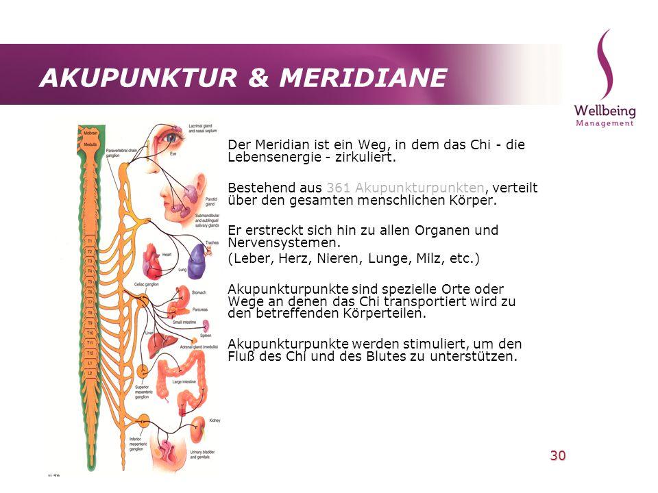 30 AKUPUNKTUR & MERIDIANE Der Meridian ist ein Weg, in dem das Chi - die Lebensenergie - zirkuliert. Bestehend aus 361 Akupunkturpunkten, verteilt übe