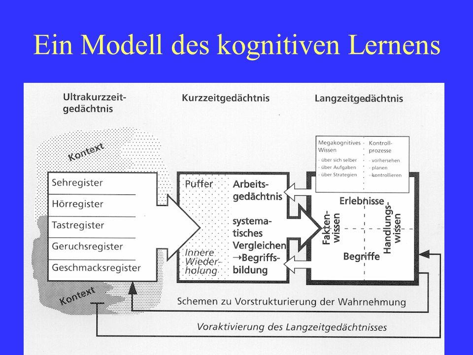 Fredi BüchelDELV Grundkurs Luzern 20106 Ein Modell des Kurzzeitgedächtnisses