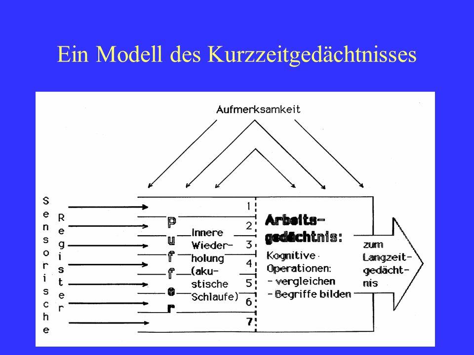 Fredi BüchelDELV Grundkurs Luzern 20107 Die Variablen der Metakognition Die Metakognition beschäftigt sich mit der Rolle des Bewusstseins beim Lernen, Denken und Problemlösen.
