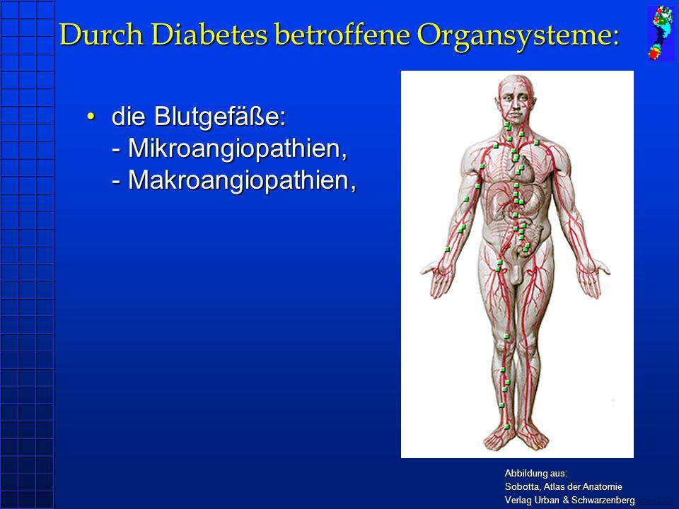 Copyright novel München 2004 die Blutgefäße: - Mikroangiopathien, - Makroangiopathien,die Blutgefäße: - Mikroangiopathien, - Makroangiopathien, Abbild