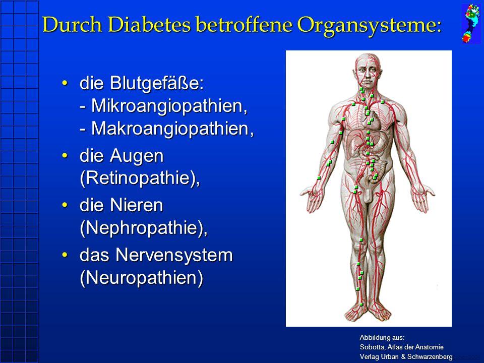 Copyright novel München 2004 Patient: 63 Jahre, Typ 2 - Diabetes (seit 11 Jahren), Polyneuropathie (emed Plattformmessung) Versorgung: OSM D.