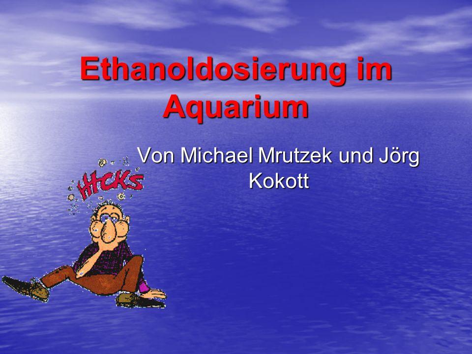Aus diesen Erfahrungen entstand die Idee der Dosierung von Ethanol im Aquarium.