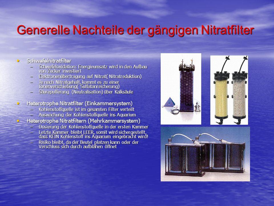 Generelle Nachteile der gängigen Nitratfilter Schwefelnitratfilter Schwefelnitratfilter –Schwefeloxidation: Energieumsatz wird in den Aufbau von Zucke