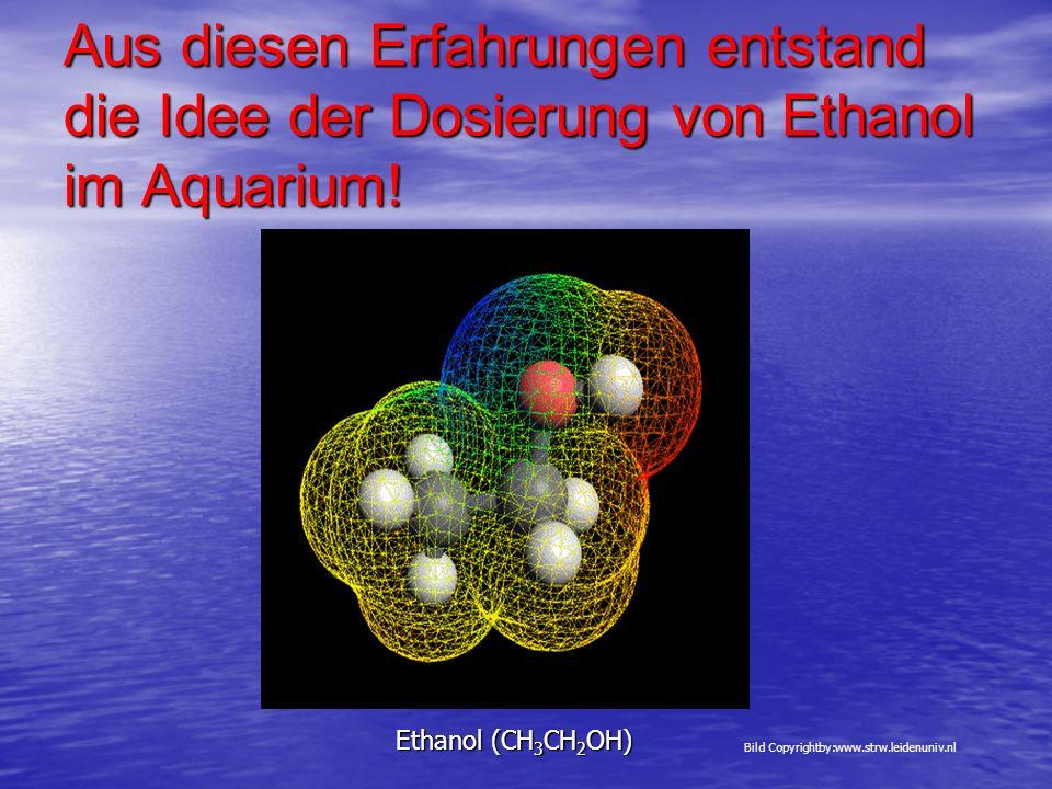 Aus diesen Erfahrungen entstand die Idee der Dosierung von Ethanol im Aquarium! Ethanol (CH 3 CH 2 OH) Bild Copyrightby:www.strw.leidenuniv.nl