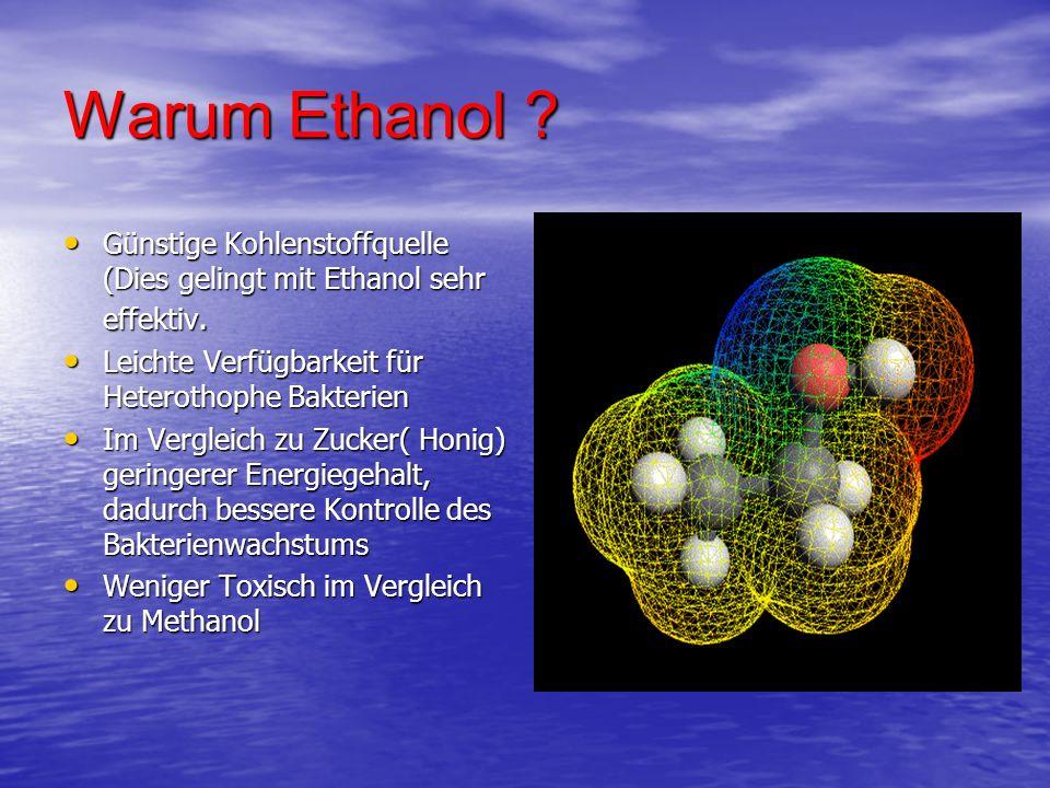 Warum Ethanol ? Günstige Kohlenstoffquelle (Dies gelingt mit Ethanol sehr effektiv. Günstige Kohlenstoffquelle (Dies gelingt mit Ethanol sehr effektiv