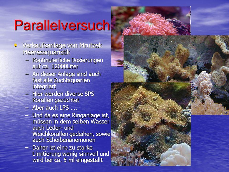 Parallelversuche… Verkaufsanlage von Mrutzek Meeresaquaristik Verkaufsanlage von Mrutzek Meeresaquaristik –Kontinuierliche Dosierungen auf ca. 12000Li