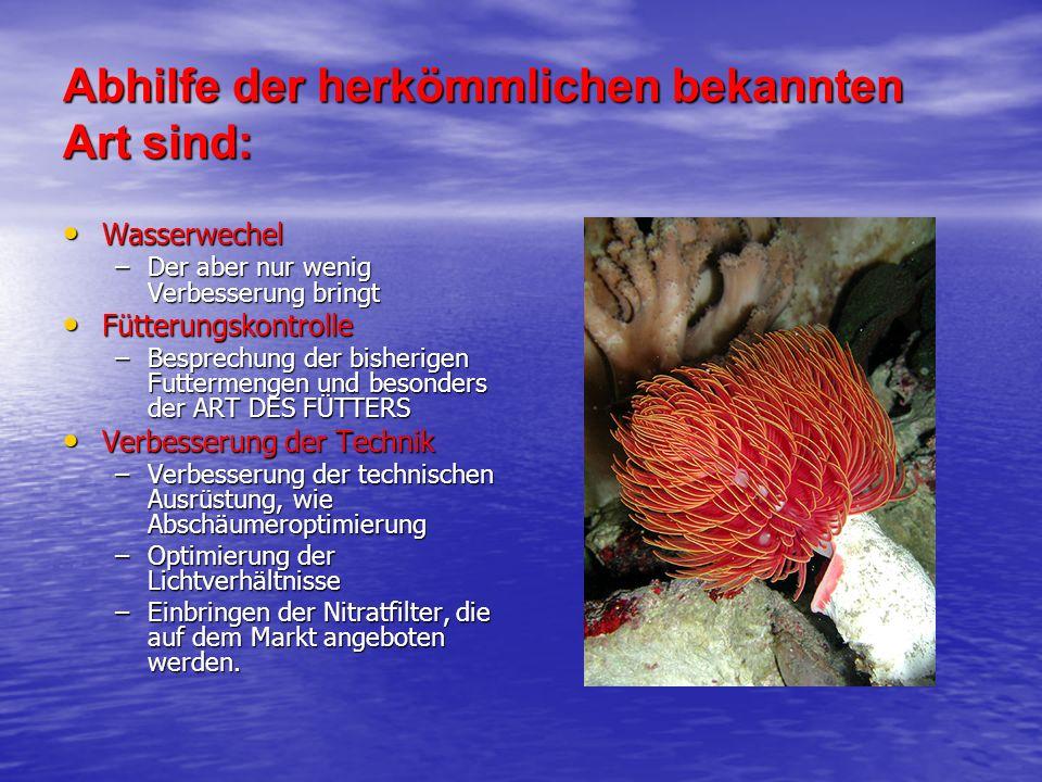 Abhilfe der herkömmlichen bekannten Art sind: Wasserwechel Wasserwechel –Der aber nur wenig Verbesserung bringt Fütterungskontrolle Fütterungskontroll