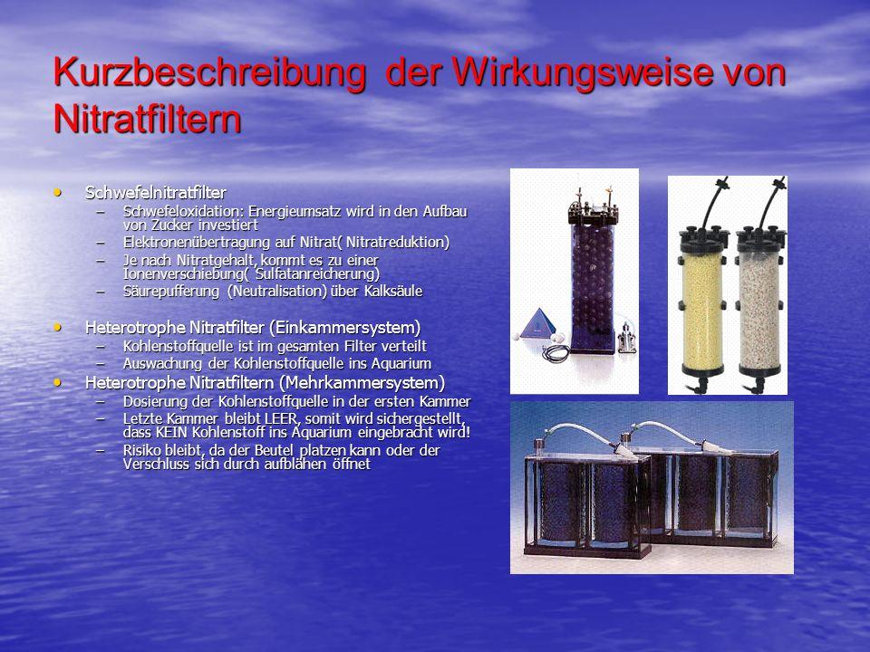 Kurzbeschreibung der Wirkungsweise von Nitratfiltern Schwefelnitratfilter Schwefelnitratfilter –Schwefeloxidation: Energieumsatz wird in den Aufbau vo