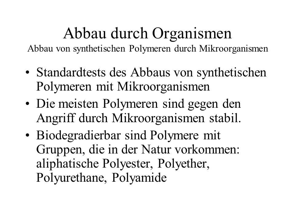Abbau durch Organismen Enzyme spalten Hauptketten in natürlichen Polymeren EnzymePolymerVorkommen KohlenhydrateAmylaseAmyloseMalz, Hefe CellulaseCelluloseBakterien ProteinePepsinProteineMagen Proteine Bakterien Trypsin