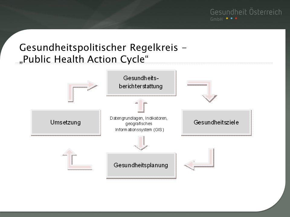 Titelmasterformat durch Gesundheitspolitischer Regelkreis - Public Health Action Cycle