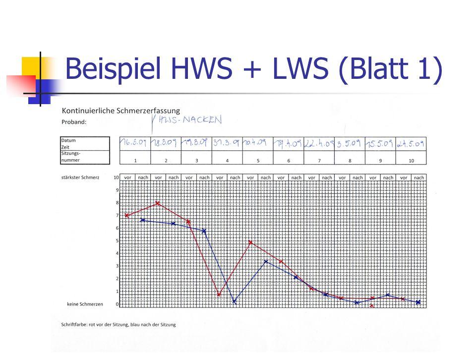 Beispiel HWS + LWS (Blatt 1)