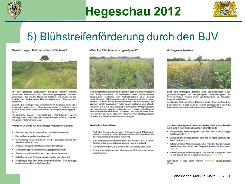 Hegeschau 2012 5) Blühstreifenförderung durch den BJV Landsmann Markus-März 2012-14