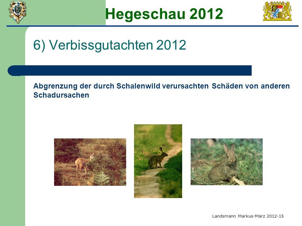 Hegeschau 2012 6) Verbissgutachten 2012 Abgrenzung der durch Schalenwild verursachten Schäden von anderen Schadursachen Landsmann Markus-März 2012-15