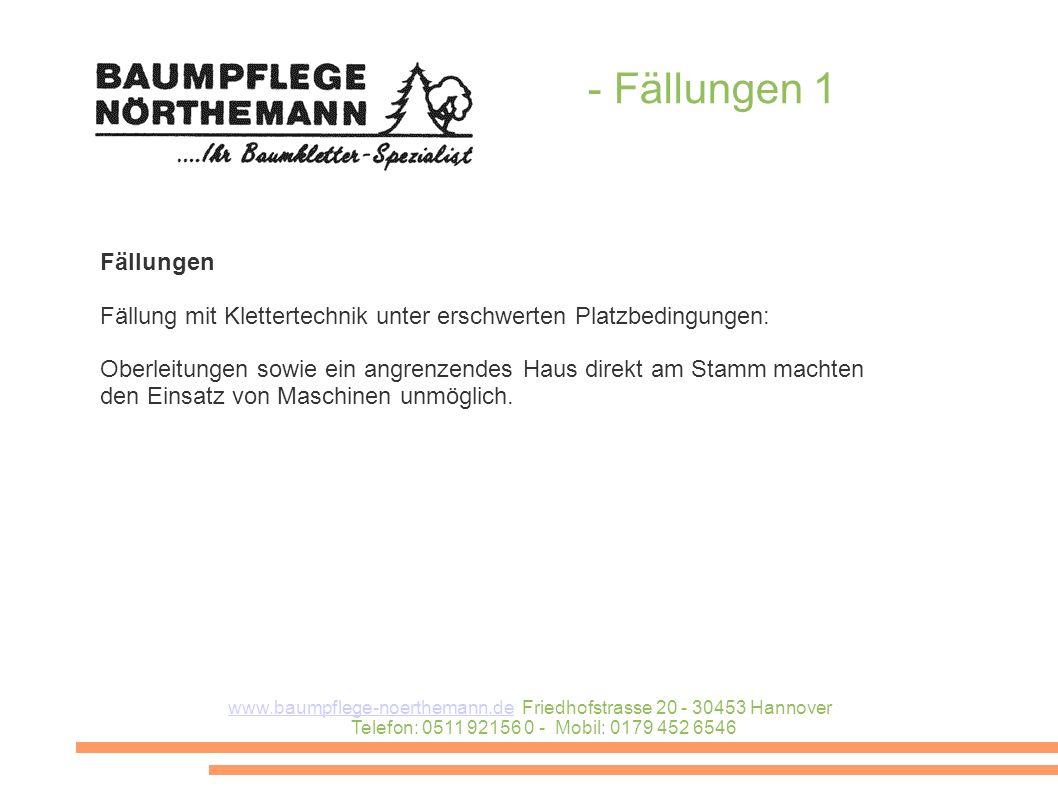 - Fällungen 1 www.baumpflege-noerthemann.dewww.baumpflege-noerthemann.de Friedhofstrasse 20 - 30453 Hannover Telefon: 0511 92156 0 - Mobil: 0179 452 6