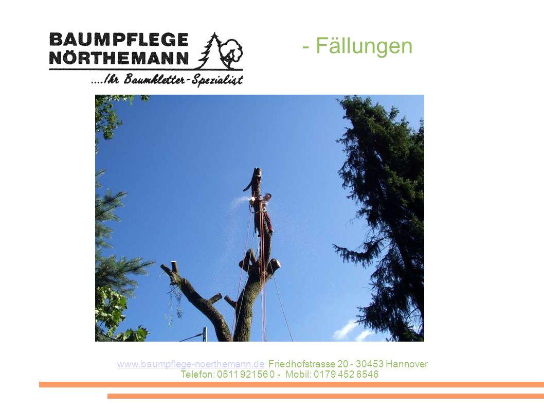www.baumpflege-noerthemann.dewww.baumpflege-noerthemann.de Friedhofstrasse 20 - 30453 Hannover Telefon: 0511 92156 0 - Mobil: 0179 452 6546 - Fällungen