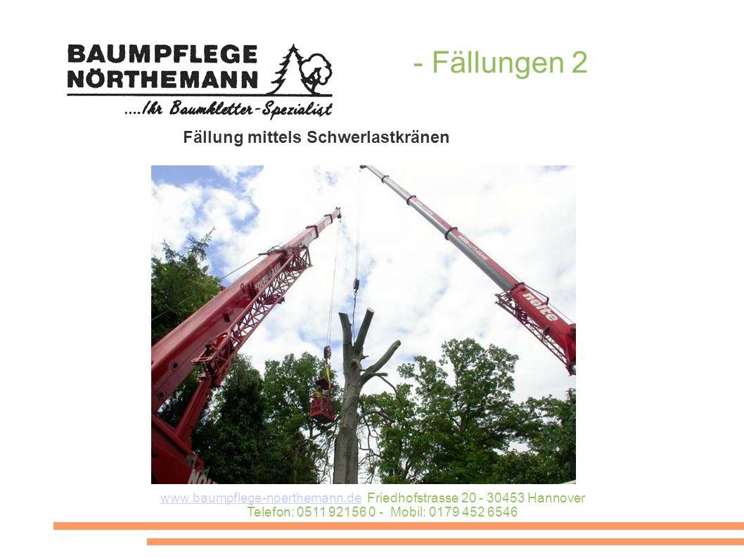 www.baumpflege-noerthemann.dewww.baumpflege-noerthemann.de Friedhofstrasse 20 - 30453 Hannover Telefon: 0511 92156 0 - Mobil: 0179 452 6546 - Fällungen 2 Fällung mittels Schwerlastkränen