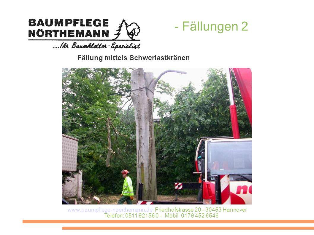 www.baumpflege-noerthemann.dewww.baumpflege-noerthemann.de Friedhofstrasse 20 - 30453 Hannover Telefon: 0511 92156 0 - Mobil: 0179 452 6546 - Fällunge