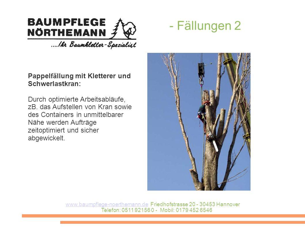 www.baumpflege-noerthemann.dewww.baumpflege-noerthemann.de Friedhofstrasse 20 - 30453 Hannover Telefon: 0511 92156 0 - Mobil: 0179 452 6546 - Fällungen 2 Pappelfällung mit Kletterer und Schwerlastkran: Durch optimierte Arbeitsabläufe, zB.