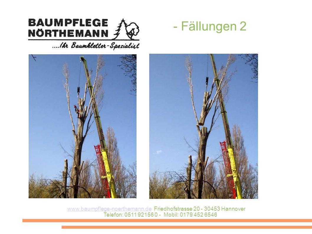 www.baumpflege-noerthemann.dewww.baumpflege-noerthemann.de Friedhofstrasse 20 - 30453 Hannover Telefon: 0511 92156 0 - Mobil: 0179 452 6546 - Fällungen 2