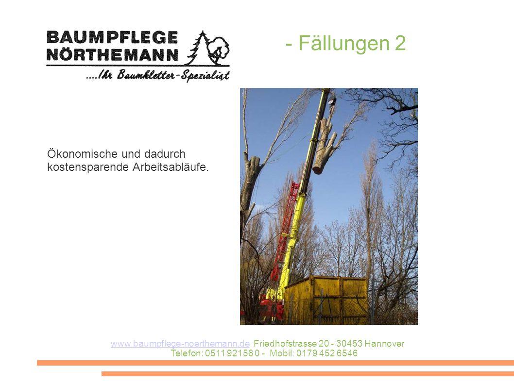www.baumpflege-noerthemann.dewww.baumpflege-noerthemann.de Friedhofstrasse 20 - 30453 Hannover Telefon: 0511 92156 0 - Mobil: 0179 452 6546 - Fällungen 2 Ökonomische und dadurch kostensparende Arbeitsabläufe.