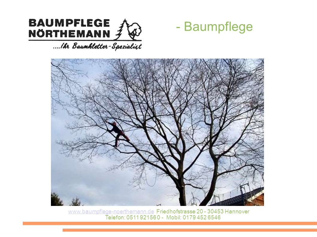 - Baumpflege www.baumpflege-noerthemann.dewww.baumpflege-noerthemann.de Friedhofstrasse 20 - 30453 Hannover Telefon: 0511 92156 0 - Mobil: 0179 452 6546