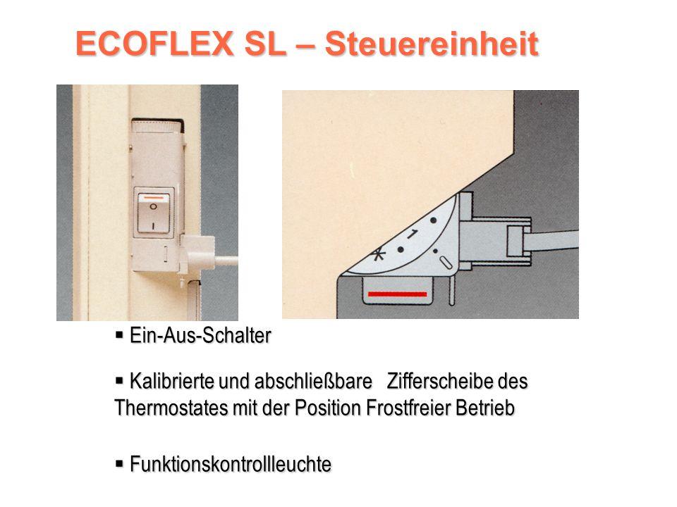 Digitaler Thermostat A.S.I.C.