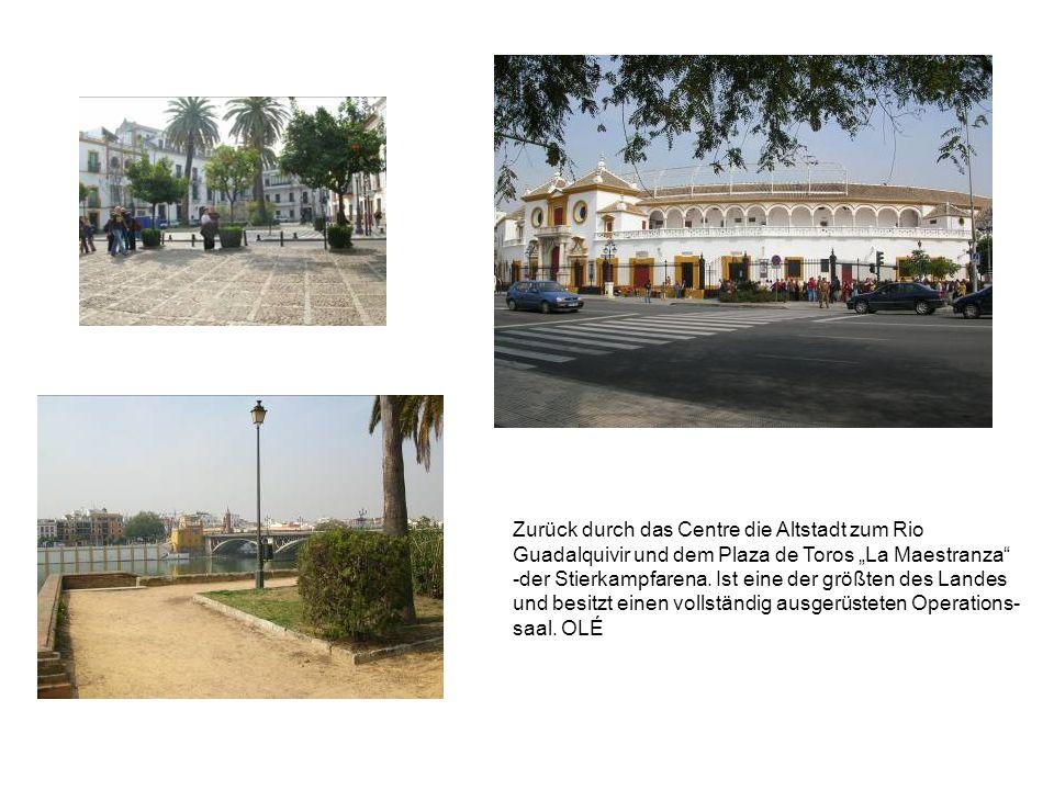 Zurück durch das Centre die Altstadt zum Rio Guadalquivir und dem Plaza de Toros La Maestranza -der Stierkampfarena.