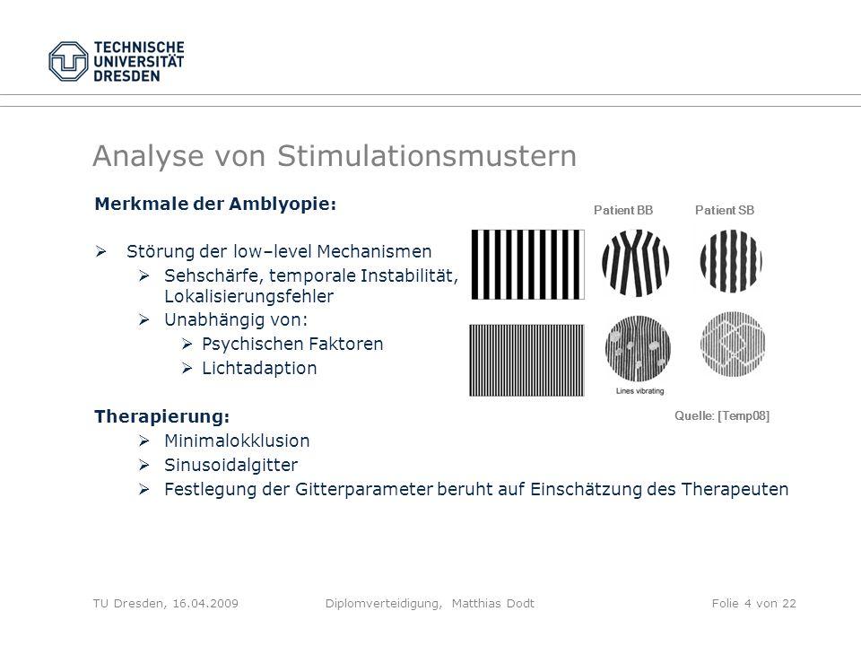 Analyse von Stimulationsmustern Merkmale der Amblyopie: Störung der low–level Mechanismen Sehschärfe, temporale Instabilität, Lokalisierungsfehler Una
