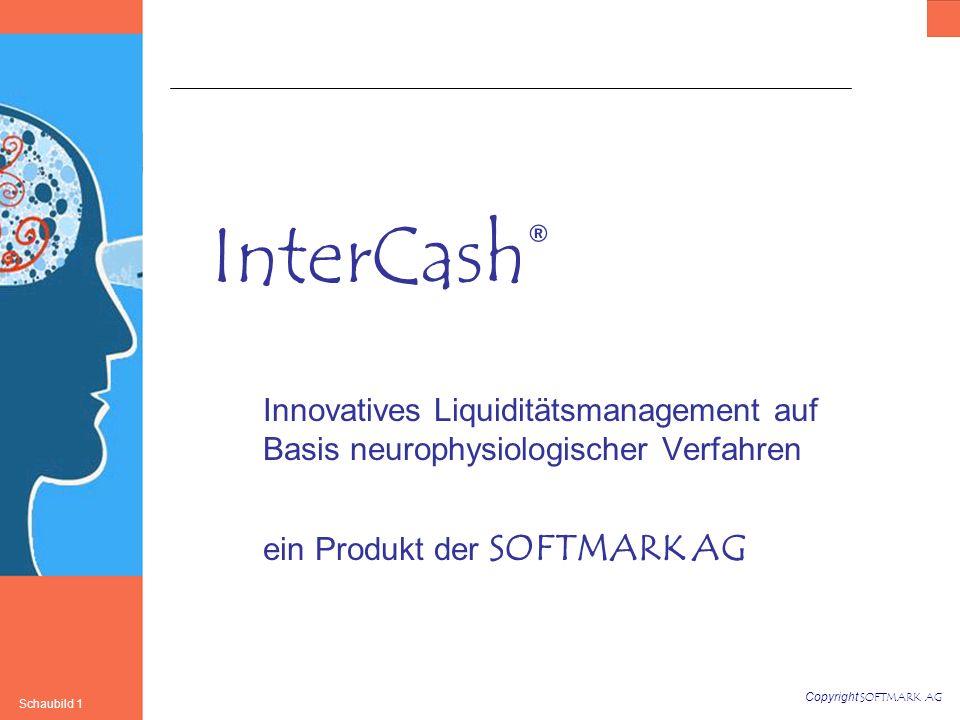 Copyright SOFTMARK AG Schaubild 1 InterCash® Innovatives Liquiditätsmanagement auf Basis neurophysiologischer Verfahren ein Produkt der SOFTMARK AG