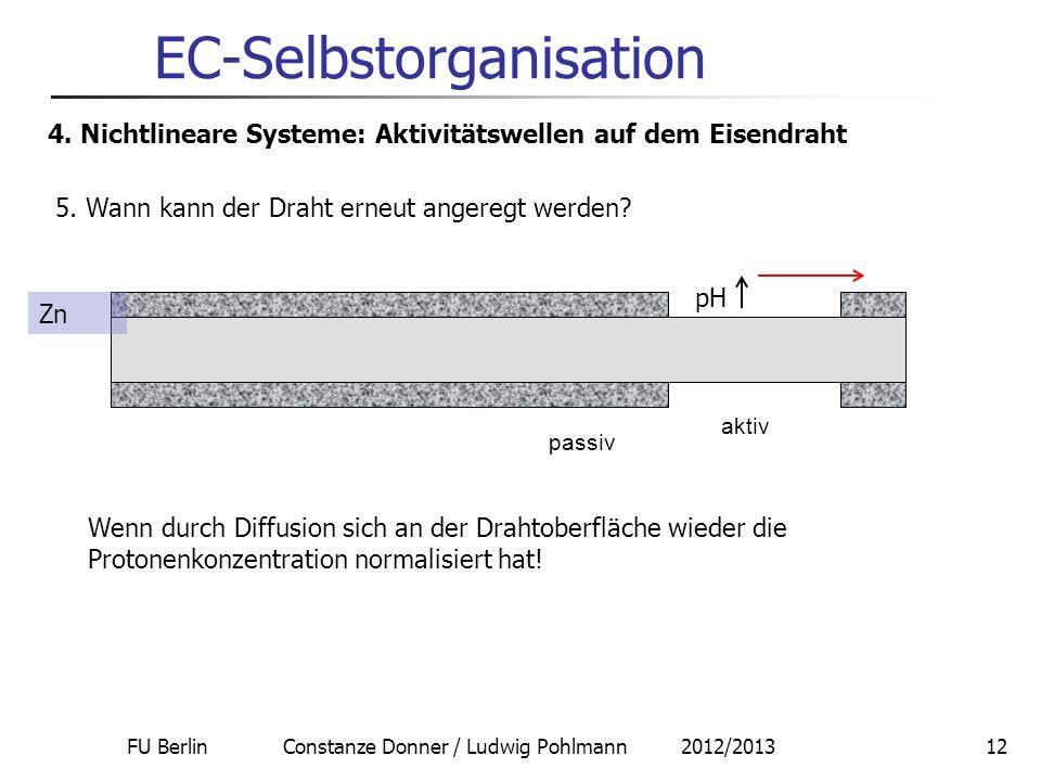FU Berlin Constanze Donner / Ludwig Pohlmann 2012/201312 EC-Selbstorganisation 4. Nichtlineare Systeme: Aktivitätswellen auf dem Eisendraht 5. Wann ka