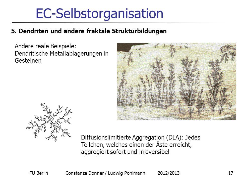 FU Berlin Constanze Donner / Ludwig Pohlmann 2012/201317 EC-Selbstorganisation 5. Dendriten und andere fraktale Strukturbildungen Andere reale Beispie