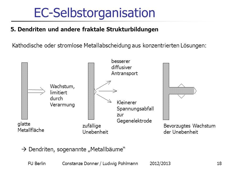 FU Berlin Constanze Donner / Ludwig Pohlmann 2012/201318 EC-Selbstorganisation 5. Dendriten und andere fraktale Strukturbildungen Kathodische oder str