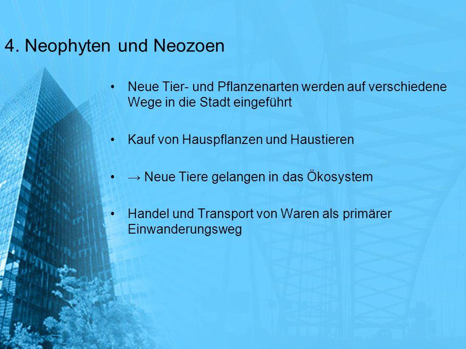 4. Neophyten und Neozoen Neue Tier- und Pflanzenarten werden auf verschiedene Wege in die Stadt eingeführt Kauf von Hauspflanzen und Haustieren Neue T